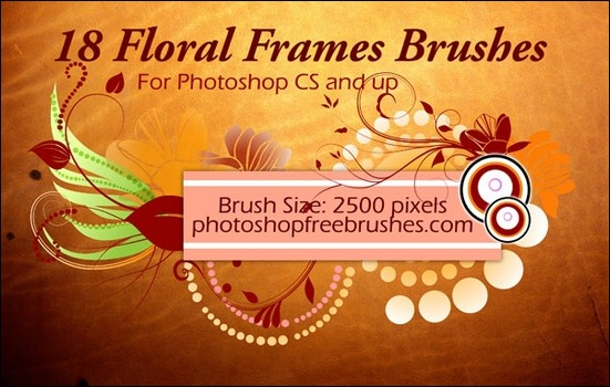 18-floral-frame-ps-brushes