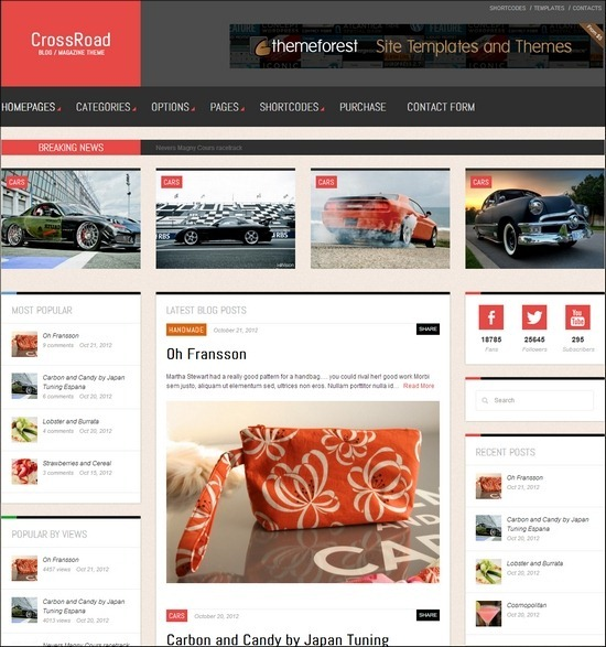 CrossRoad is a Responsive WordPress Theme, best suited for Magazines, News and Blogs