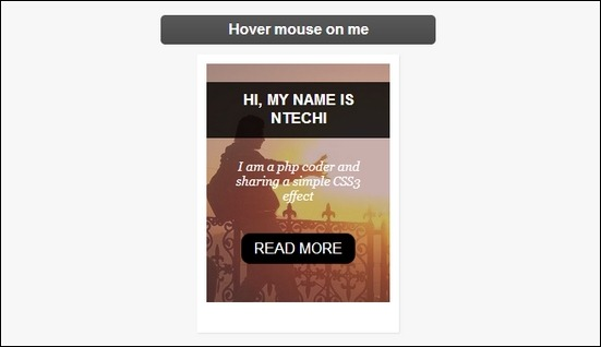 css3-image-hover-effects-with-caption.
