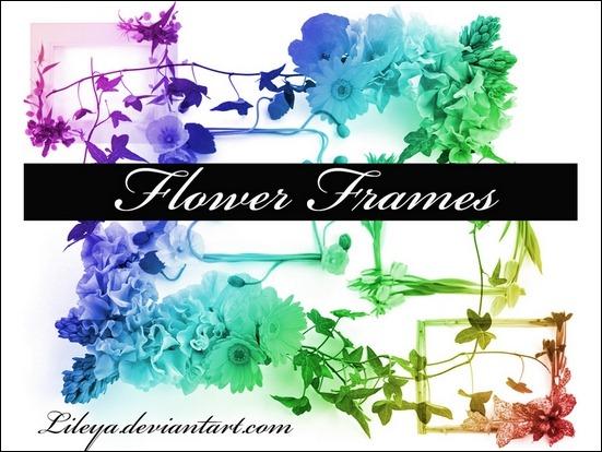 flower-frames