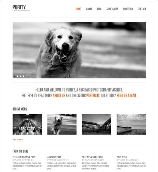 purity-clean-minimal-bold-wordpress-theme