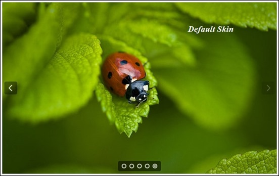 50+ Useful jQuery Image Slider Roundup