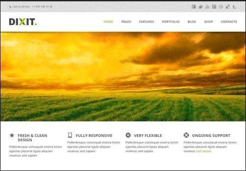 Dixit business website template