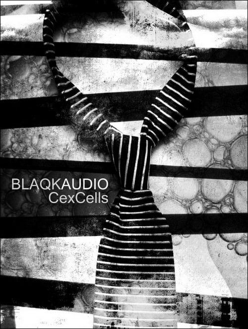 blaqk-audio-poster