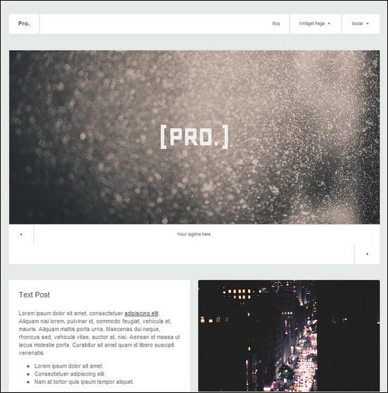 pro-responsive-tumblr-theme