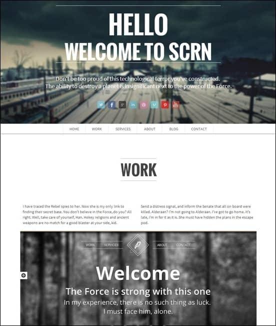 scrn-responsive-single-page-portfolio[5]