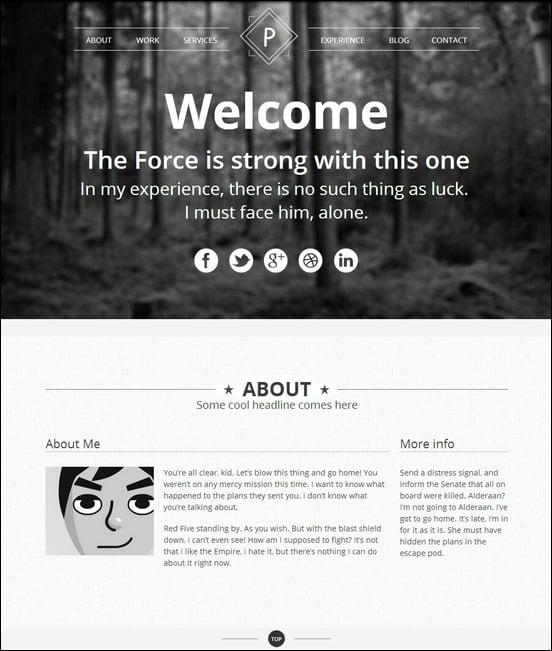 viewpoint-responsive-single-page-portfolio[3]