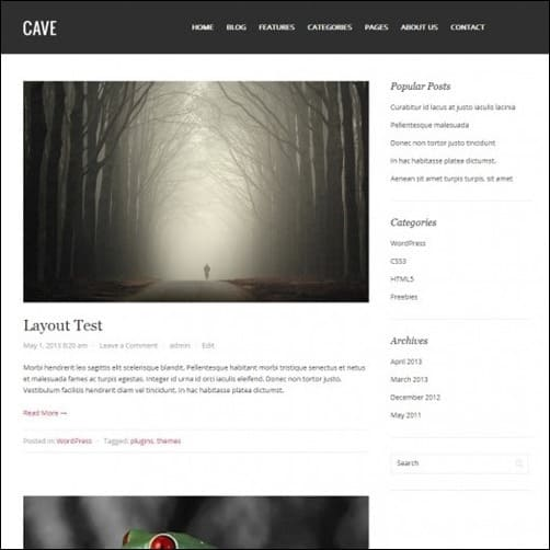 cave free wordpress theme