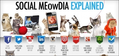 30+ Useful And Informative Social Media Infographics