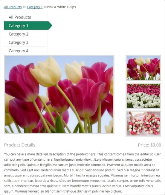 Sample-Product-Page-with-Post-and-ImagesSample-Product-Post-within-Page-with-Descriptive-Text-and-Images