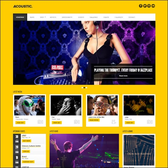 Acoustic - Premium Music WordPress Theme