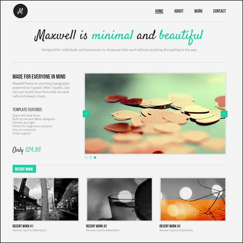 Maxwell Retro Adobe Muse Template