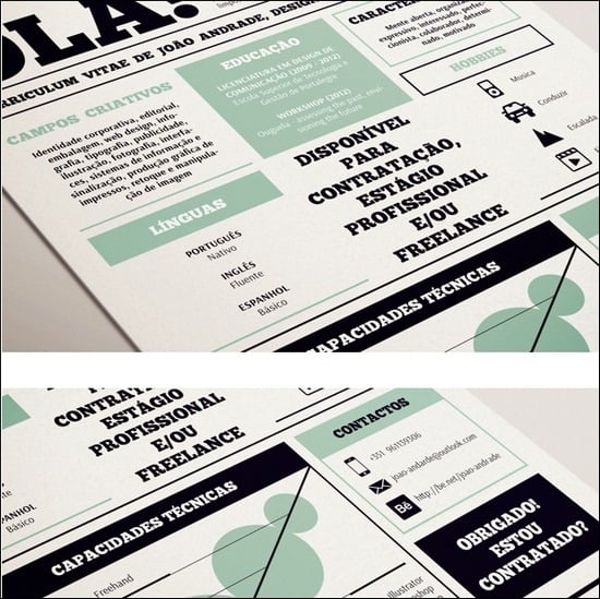 50+ Great Examples of Creatively Designed Resumes | Tripwire