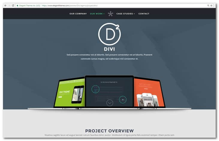 Divi The Ultimate WordPress Theme and Visual Page Builder