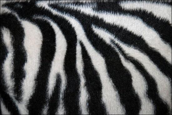 Pattern008