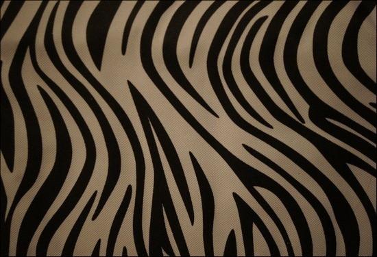 ZebraPattern1