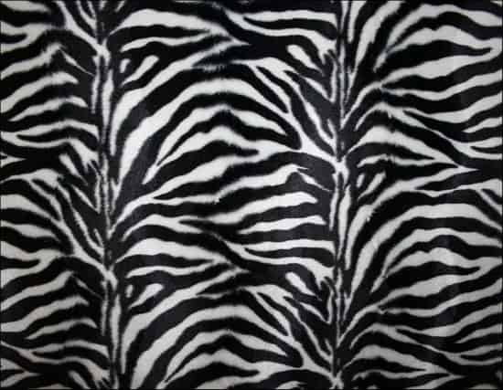 30+ Zebra Print Texture for Free Download