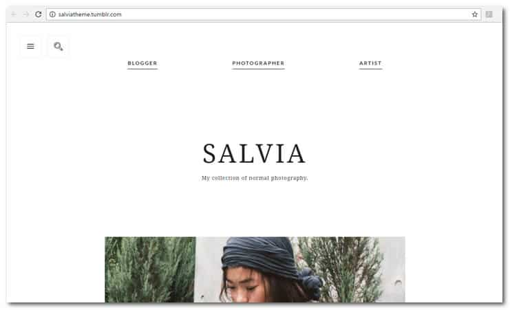 salvia tumblr theme
