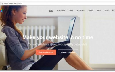 30+ Best WordPress Themes – Get a Remarkable Website