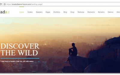 Avada Theme Review – Is Avada Really One Of The Best WordPress Themes ever?
