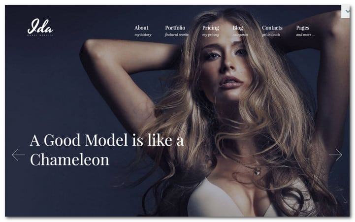 Photographing Studio WP Template