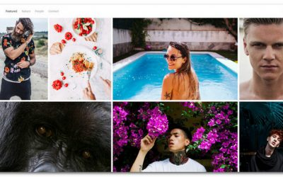 15+ Photo WordPress Themes For Showcasing Your Best Work in 2017