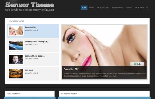 january premium themes